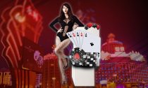 Transactions in the online casinos will be maintained transparently by the gambling agents